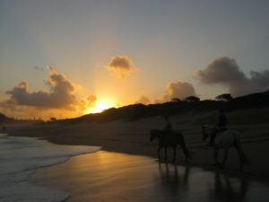 Ride off into the sunset on the beach